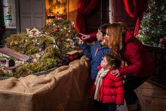 Décoration du billard du château de la Ferté St Aubin à Noël.